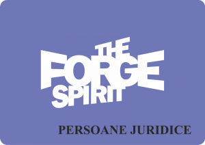 donatii the forge spirits pers juridice